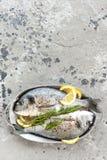 Dorado de poisson frais Poissons crus de dorado avec le citron et le romarin Dorade ou poissons de dorada Images libres de droits