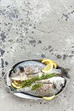 Dorado de poisson frais Poissons crus de dorado avec le citron et le romarin Dorade ou poissons de dorada Photo libre de droits