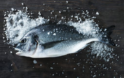 Dorado de poisson frais sur le conseil noir avec du sel Image stock