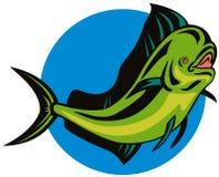 Dorado dolphin fish. Vector art of a Stock Photography