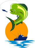 Dorado dolphin fish. Illustration of a Dorado dolphin fish on white background Royalty Free Stock Photos