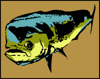 Dorado dolphin Mahi-Mahi fish  - vector Royalty Free Stock Images