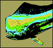 Dorado dolphin male fish  - vector Royalty Free Stock Photography