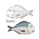 Dorado exhausto de los pescados de la mano blanco y negro y color stock de ilustración