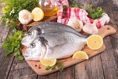 Dorado fish on board Stock Image