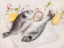 Dorado fish composing with lemon, spices and salt Royalty Free Stock Images