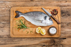 Dorado fish and condiments; above view. Stock Photography