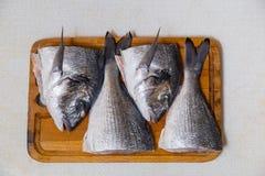 Dorado fish on a cutting board knife cut half. Dorado fish on a cutting board knife cut in half Royalty Free Stock Photos