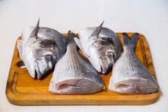 Dorado fish on a cutting board knife cut half. Dorado fish on a cutting board knife cut in half Stock Photography