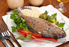 Dorado fish with Fresh Parsley Stock Images