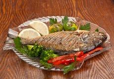 Dorado fish with Fresh Thyme Royalty Free Stock Photo