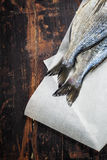 Dorado fish Royalty Free Stock Photos