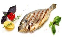 Dorado Fish with Garnish. On White Background stock images