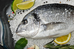 Dorado fish is in glass dish with salt, rosemary, garlic, lime a Stock Image