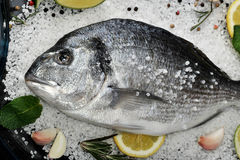 Dorado fish is in glass dish with salt, rosemary, garlic, lime a Stock Photos