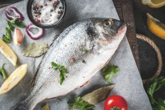 Dorado fish with ingredients for cooking. Fresh raw organic fish Dorado, sea bream with ingredients for cooking lemon, tomatoes, onion, salt, pepper, bay leaf Stock Images