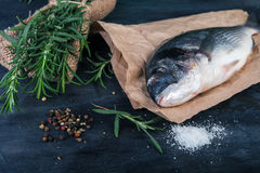 Dorado fish with laurel leaves and spices Royalty Free Stock Photography