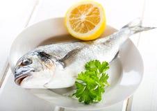 Dorado fish with lemon and parsley Royalty Free Stock Photography