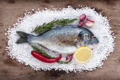 Dorado fish lies on a large sea salt with fresh garlic, chili, l Royalty Free Stock Photography