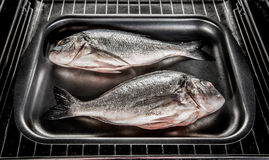 Dorado fish in the oven. Royalty Free Stock Photos