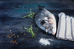 Dorado fish with  rosemary and peper Royalty Free Stock Images