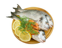 Dorado fish and shrimp on cutting board Stock Photos