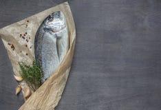 Dorado fish on wooden background Stock Photo