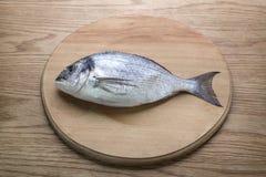Dorado fish on a wooden board top vew. Dorado fish on a wooden board, top vew Royalty Free Stock Images