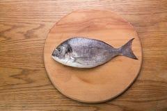 Dorado fish on a wooden board top vew. Dorado fish on a wooden board, top vew Stock Photo