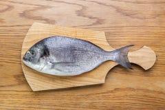 Dorado fish on a wooden board top vew. Dorado fish on a wooden board, top view Stock Photography