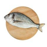 Dorado fish on wooden round board. Dorado fish on round wooden cutting board Royalty Free Stock Image