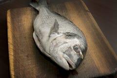 Dorado fish on wooden table Stock Photos