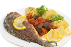 Dorado grilled fish Royalty Free Stock Image