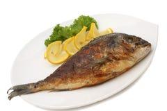 Dorado ha cotto i pesci alla griglia Immagine Stock