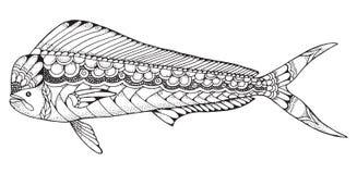 Dorado mahi mahi鱼zentangle和被点刻的风格化传染媒介不适 免版税库存照片