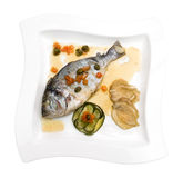dorado ryba Zdjęcia Stock