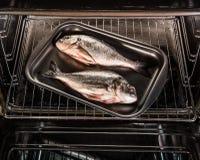Doradovissen in de oven Stock Afbeeldingen