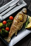 Doradovissen, die in oven, met tomaten en broccoli worden geroosterd royalty-vrije stock afbeelding