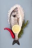 Doradovissen, groot overzees zout, Spaanse peper, citroen en rozemarijn op een ligh Stock Foto's