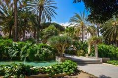 Doramas公园在拉斯帕尔马斯de大加那利岛,西班牙 库存图片