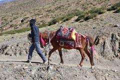 Dorchen, Θιβέτ, Κίνα, 18 Ιουνίου, 2018 Mann με ένα άλογο που κάνει το parikrama γύρω από Kailas στο Θιβέτ στοκ εικόνες με δικαίωμα ελεύθερης χρήσης