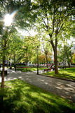 Dorchester Square. Public park in Montreal's downtown core Royalty Free Stock Image