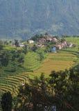 Dorf auf einem Gipfel und Reisfeldern Stockfoto