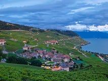 Dorf in den Weinbergen, die Schweiz Lizenzfreies Stockbild