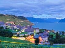 Dorf in den Weinbergen, die Schweiz Stockbilder