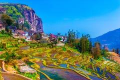 Dorf in der Südchina mit traditionellen Häusern und Reis-Terrassen Lizenzfreie Stockbilder