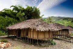 Dorf-Hütte Stockbilder