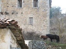 Dorf-Landschaft Lizenzfreie Stockbilder