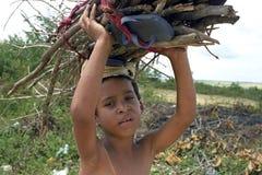 Dorf-Leben, zerrendes Brennholz des brasilianischen Jungen stockfotografie