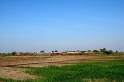 Dorf mit den Häusern umgeben durch Ackerland nahe Mirpurkhas Sindh Pakistan Lizenzfreie Stockfotografie